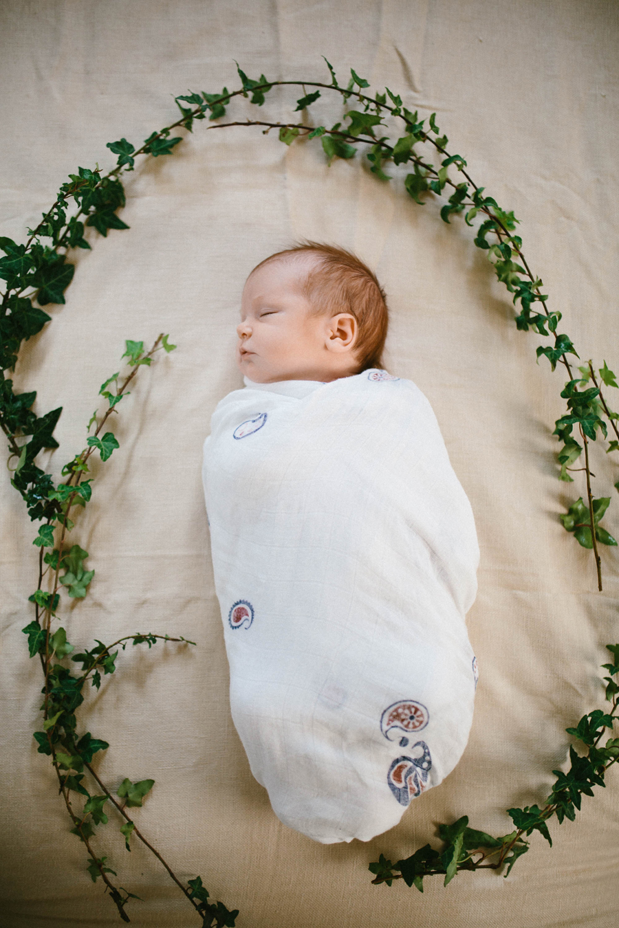 Ventura Lifestyle Newborn Session